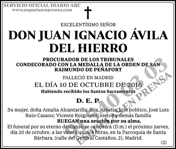 Juan Ignacio Ávila del Hierro